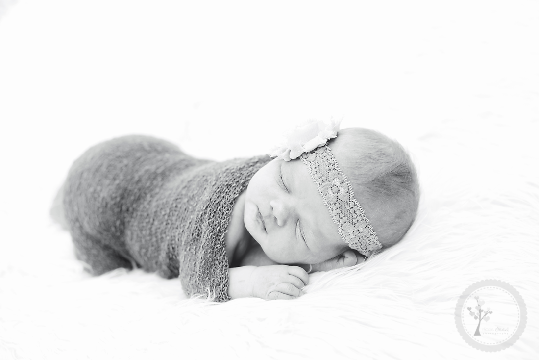 Newborn_5