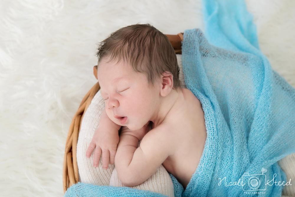 Newborn L_13