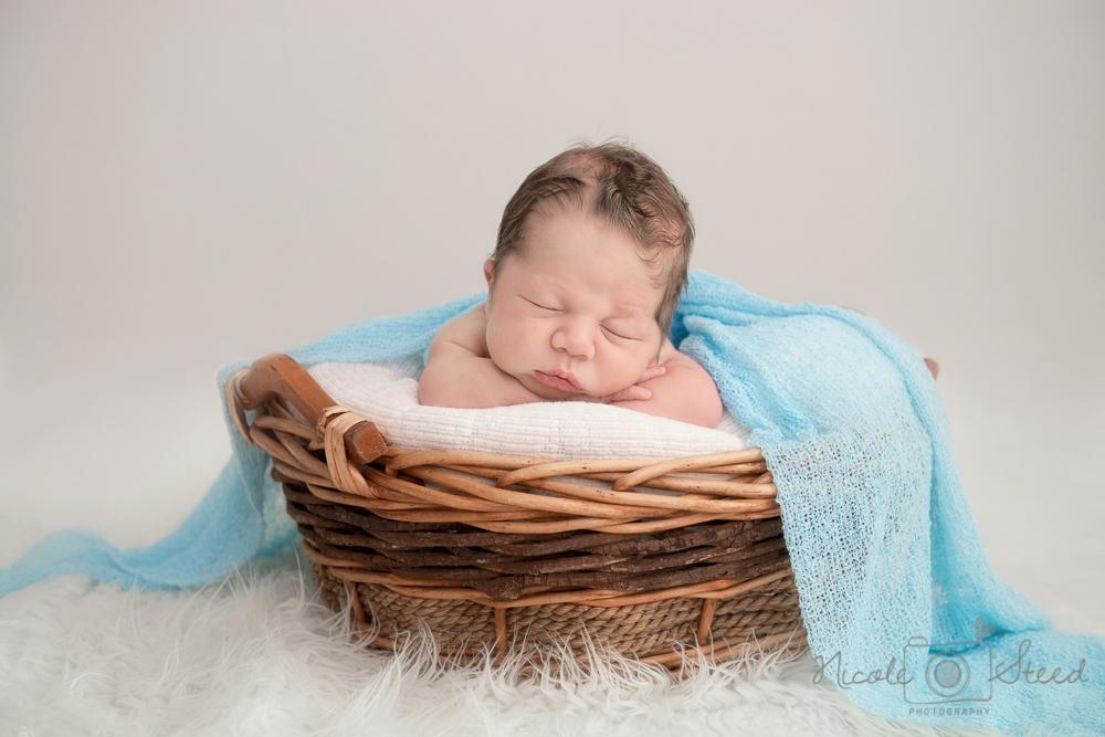Newborn L_15